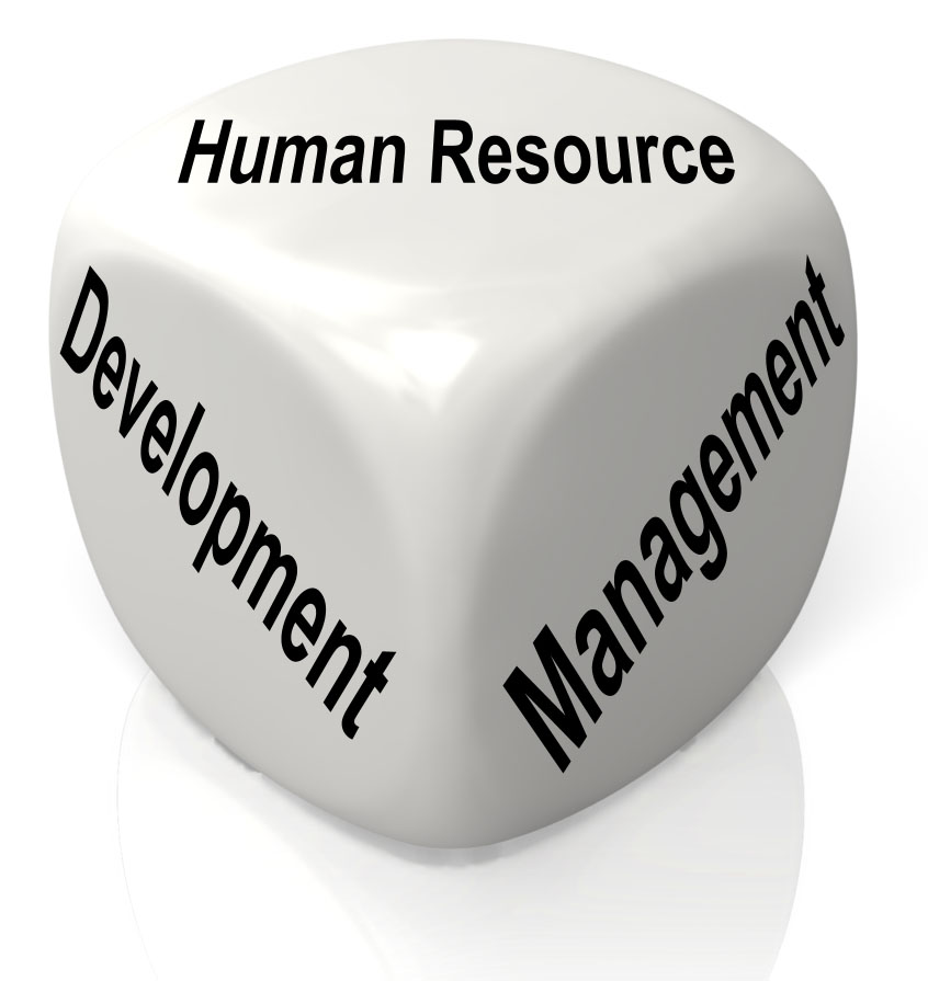 Human Resource Management - Saiha: Web Application development