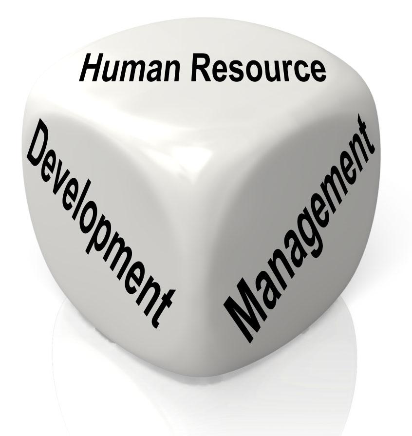 Human Resource Management - Saiha: Web Application development